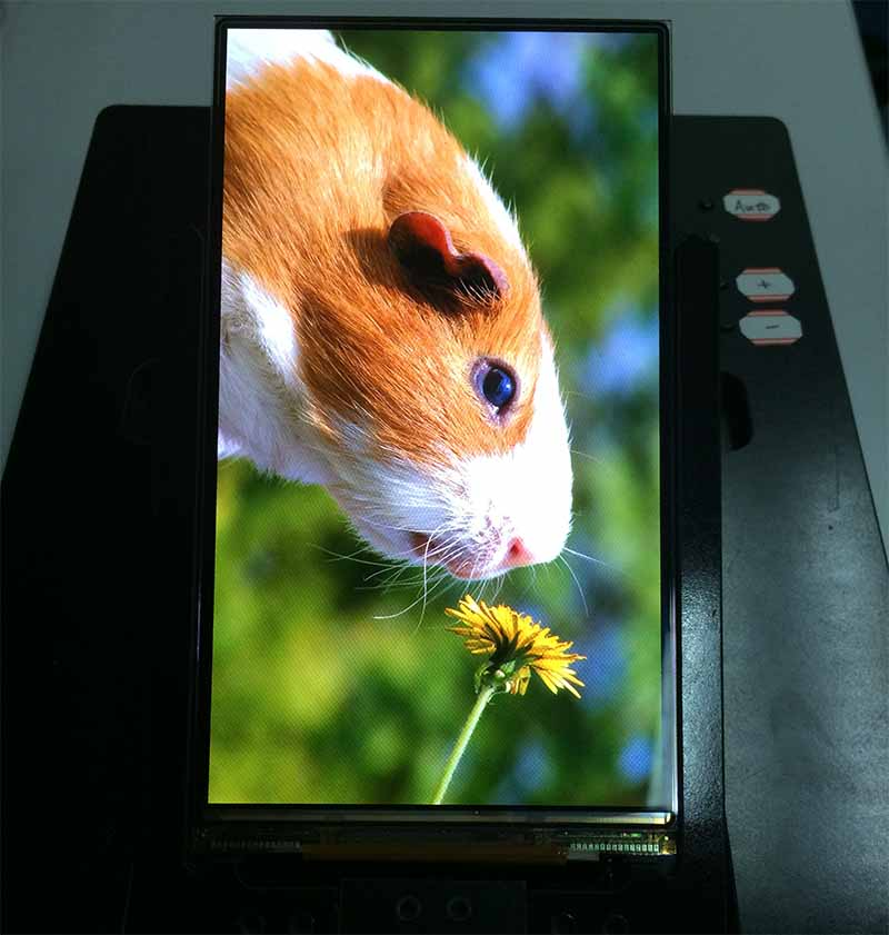 "5,5 ""Full HD 1080p 1080 × 1920 AMOLED für Handy"