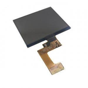 240x160 LCD Display COG COB STN-Display